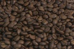 фото зерен кофе предпосылки близкое вверх Стоковые Изображения