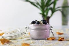 Фото йогурта голубики с миндалинами и высушенным манго, с бразильским хоботом в несосредоточенной предпосылке стоковые фотографии rf