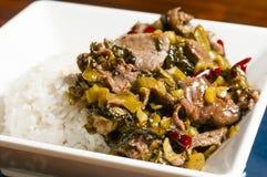 Китайская ед-замаринованная vegetable говядина Стоковые Изображения RF