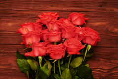 Фото конца-вверх красных роз Стоковая Фотография RF
