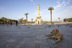 Фото концепции перемещения; Турция/Izmir/Konak/исторические старые башня с часами/квадрат Konak стоковое фото rf