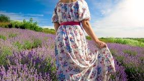 Фото крупного плана вид сзади молодой женщины в длинном платье идя на поле лаванды Стоковое Изображение