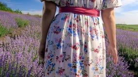 Фото крупного плана вид сзади молодой женщины в длинном платье стоя на поле лаванды Стоковое Изображение