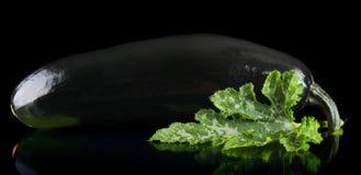 Фото крупного плана цукини на черной предпосылке Стоковое Изображение