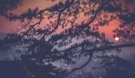 Фото ландшафта красивого восхода солнца стоковые фото