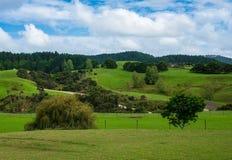 Фото ландшафта Новой Зеландии стоковое изображение
