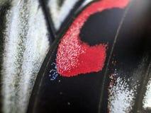 Фото макроса крыла бабочки Стоковое Изображение