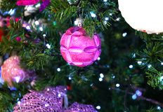 Фото орнамента рождества Яркий шарик на ели Орнамент рождества на зеленом крупном плане ели Фото веселого рождества стоковое изображение