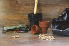 Фото пакета почвы, цветочных горшков лопаткоулавливателя, керамических и черных пластичных для rea семян заводов, тыквы, сквоша и Стоковое фото RF