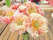 Фото принятое в лето Розовые цветки пиона, чувствительные цветки для Стоковое фото RF