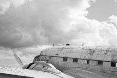 Фото птицы войны черно-белое Стоковые Изображения RF