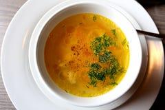 Фото плиты куриного супа Стоковая Фотография