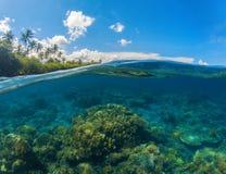 Фото разделенное Seascape Двойной вид на море Подводный коралловый риф Стоковое фото RF
