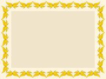 фото рамки сертификата Стоковые Фотографии RF