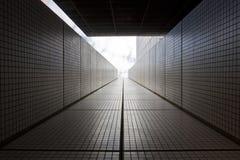 Фото самомоднейших зданий Стоковые Изображения RF