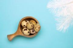 Фото сверху малых сырых яичек триперсток в деревянной кружке и белых пер на голубой таблице Надземное фото яичка триперсток Стоковое Фото