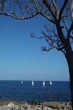 Фото сицилийской гонки плавания Стоковые Фото