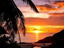 Фото силуэта с заходом солнца на пляже Стоковая Фотография