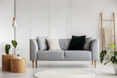 Фото современной живущей комнаты с серой софой стоковое фото rf