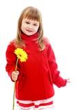 Фото студии детей разбивочных Стоковые Изображения