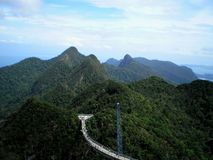 Фото тропической вегетации в горах островов Малайзии Стоковые Фото