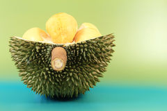 фото durian изолированное плодоовощ тропическое Стоковые Изображения