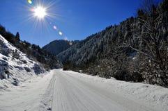Фото landscep зимы Стоковое Фото