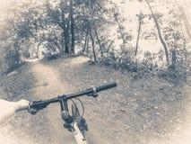 Фото vinage Oid Велосипедист в древесинах Стоковые Изображения RF