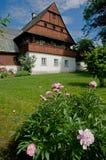 Фольклорная архитектура в Zelezny Brod, чехии стоковое фото