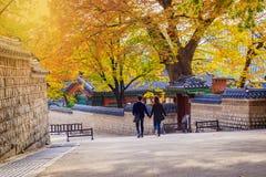 фольклорный дворец соотечественника музея Кореи gyeongbokgung стоковые изображения
