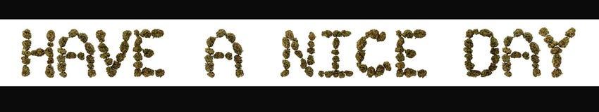 Фраза имеет славный день написанный в больших бутонах марихуаны иллюстрация вектора
