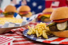 Фраи гамбургера и француза на плите Стоковые Фотографии RF