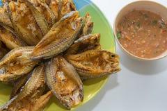 Фрай рыб и соус чилей Стоковое фото RF