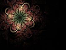 фракталь цветка мягкая Стоковая Фотография