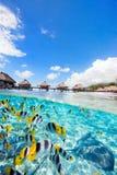 Французская Полинезия Стоковая Фотография RF