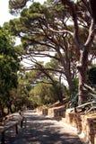 Французская ривьера пути цитадели St Tropez стоковые изображения