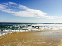 Французская ривьера St Tropez пляжа стоковая фотография
