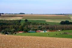 Французская сельская сцена Стоковые Изображения RF