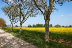 Французская сельская местность стоковые фотографии rf