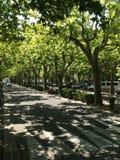 французская улица Стоковое Изображение