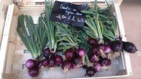 Французские луки от Провансали стоковое фото