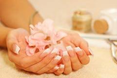 французские руки manicure детеныши женщины Стоковые Фотографии RF