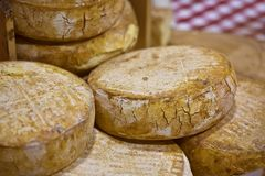 Французские chees Стоковое Изображение
