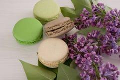 Французские macarons с хворостинами сиреней Конец-вверх Стоковые Фотографии RF
