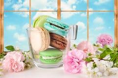 Французские macaroons других цветов в чашке Бирюза, шоколад и зеленые macaroons на предпосылке окна Стоковое фото RF