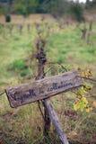 французский виноградник Стоковые Изображения RF