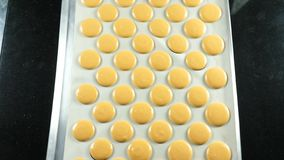 Французский десерт, процесс делать macaroon macaron, сжимая форму теста варя сумку стоковые изображения