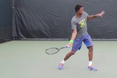 Французский теннис профессиональное Gael Monfils на Майами открытом Стоковые Фотографии RF