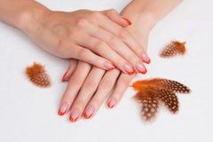 Французский manicure и померанцовые пер Стоковое фото RF