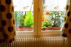 Французское окно дома, бутик-отель Парижа Стоковые Фото